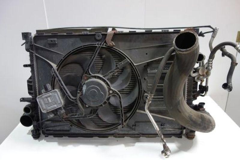 Frontverkleidung Xenon KühlerFORD S-MAX (WA6) 2.5 ST